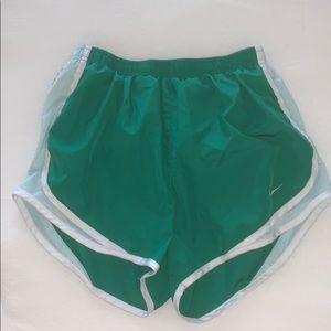 Green and Blue Nike Shorts